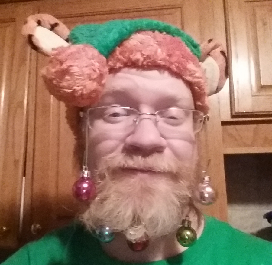 ornaments in beard